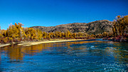 Fall Colors On The Snake River Print by Robert Bales