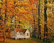 Yellow Trees Posters - Fall Cottage Poster by Cheryl Young