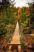 Stream Digital Art Originals - Fall Creek Falls Bridge by Paul Bartoszek