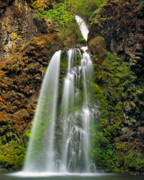 Oregon Art - Fall Creek Falls by Leland Howard
