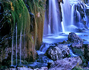 Idaho Scenery Posters - Fall Creek Falls Snake River Idaho Poster by Ed  Riche