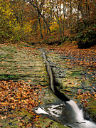 Indiana Autumn Posters - Fall Creek Gorge Nature Preserve Warren County Indiana Poster by Marsha Williamson Mohr