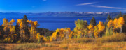 Fall Colors Art - Fall Day above Lake Tahoe by Vance Fox