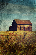 Rural Decay Prints Prints - Fall Day Print by Larysa Luciw