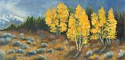Sage Originals - Fall Delight by Jerry McElroy