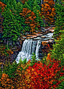 State Park Digital Art Posters - Fall Falls impasto Poster by Steve Harrington
