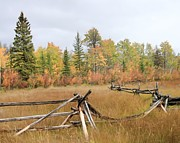 Fall Scenes Photo Originals - Fall Fenceline 2 by Roland Stanke