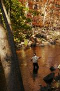 Trout Greeting Card Photo Posters - Fall Fishing 2 Poster by Susan  Lipschutz