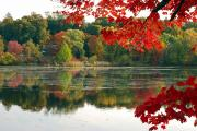 Autumn Views Prints - Fall Foliage And Reflections Print by Darlyne A. Murawski