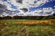Seacoast Prints - Fall Foliage Print by Eric Gendron