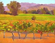 California Vineyard Painting Metal Prints - Fall Glow Metal Print by Deborah Cushman