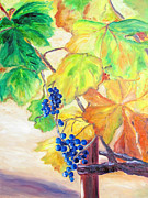 Napa Valley In Fall Paintings - Fall Grapes by Barbara Anna Knauf