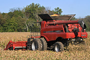Corn Picker Posters - Fall Harvest Poster by Jim Ferrier
