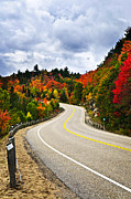 Fall Trees Posters - Fall highway Poster by Elena Elisseeva