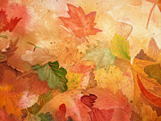 Leaf Paintings - Fall Impressions IV by Irina Sztukowski