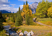 Fall In Banff National Park Print by Bob and Nancy Kendrick