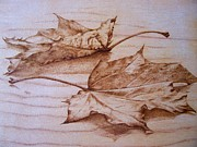 Leaf Pyrography Originals - Fall In by Cynthia Adams