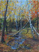 Gatineau Park Framed Prints - Fall in Gatineau Park Framed Print by Olga Pimenova