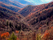 Tenn Prints - Fall In The Great Smokies Print by Skip Willits