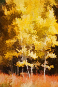 Painterly Photos - Fall in the Sierra II by Carol Leigh