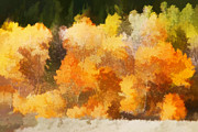 Painterly Photos - Fall in the Sierra III by Carol Leigh