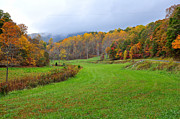 Fall Grass Prints - Fall in the Valley Print by Todd Hostetter