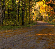 Gravel Road Prints - Fall is just around the corner Print by Thomas Young