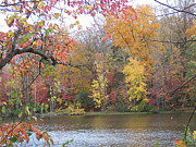 Lake Photos - Fall Lake by Martha Abell