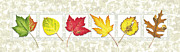 Fall Season Painting Posters - Fall Leaf Panel Poster by JQ Licensing