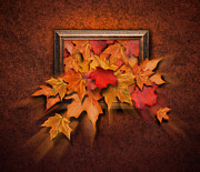Angela Waye Prints - Fall Leaves Coming out of Old Antique Frame Print by Angela Waye