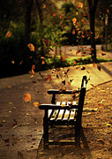 Park Bench Photos - Fall Leaves On Park Bench by Manuel Orero Galan
