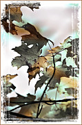 Fuad Azmat Art - Fall leaves2 by Fuad Azmat