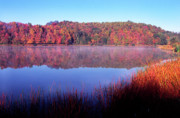 Ditch Framed Prints - Fall Morning on the Lake Framed Print by Thomas R Fletcher