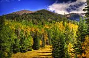 Saija  Lehtonen - Fall on the Mountain