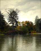 Colors Of Autumn Prints - Fall on the Snohomish River Print by Gwyn Newcombe
