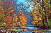 Multi Colored Posters - Fall On The Wissahickon Poster by Photograph by John Couture