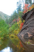 West Fork River Photos - Fall Peeks from behind the Rocks by Heather Kirk