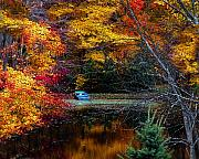 Autumn Posters - Fall Pond and Boat Poster by Tom Mc Nemar