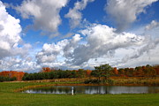 Kevin Schrader Metal Prints - Fall Pond Metal Print by Kevin Schrader