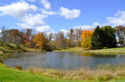 Autumn In The Country Prints - Fall Pond Print by Penny Neimiller
