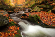 Mountain Stream Art - Fall Power by Evgeni Dinev