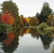 Fall Photographs Framed Prints - Fall Reflections Framed Print by Kami McKeon