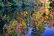 Fall Scenes Framed Prints - Fall Reflections Framed Print by Larry Bishop