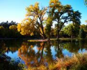 Fall Photos Posters - Fall Reflections Poster by Terril Heilman
