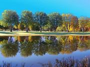 All - Fall Reflections VII by Frank LaFerriere