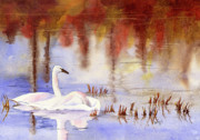 Swans... Paintings - Fall Reflections by Wendy Mould