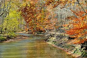 Oak Creek Photos - Fall River Bank by Robert Harmon