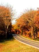 Fall Road Posters - Fall Roading Poster by David Bearden