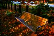 Fall Scene Posters - Fall scene and the bench in the park Poster by Susanne Van Hulst