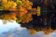 Tranquil Pond Framed Prints - Fall Scene Framed Print by Olivier Le Queinec